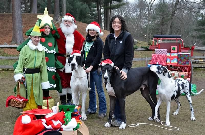 Photos of Service Dog Project, Ipswich, MA what a
