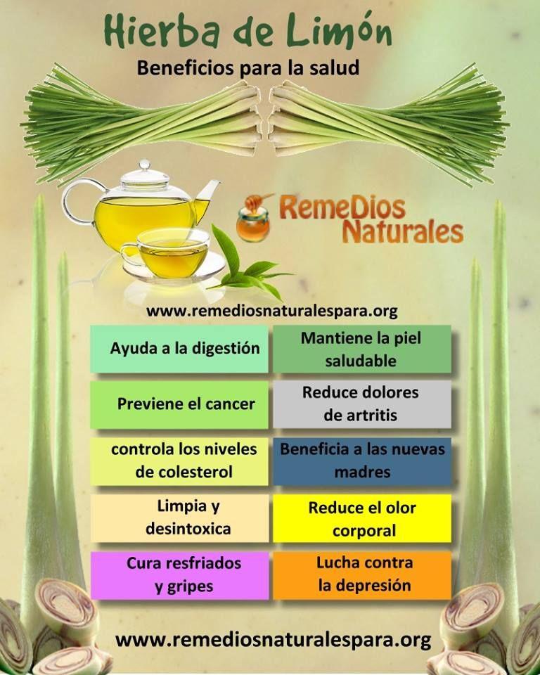 Hierba De Limón Beneficios Hierbadelimos Plantasquecuran Www Remediosnaturalespara Org Consejos Para Perder Peso Hierba De Limón Remedios Naturales