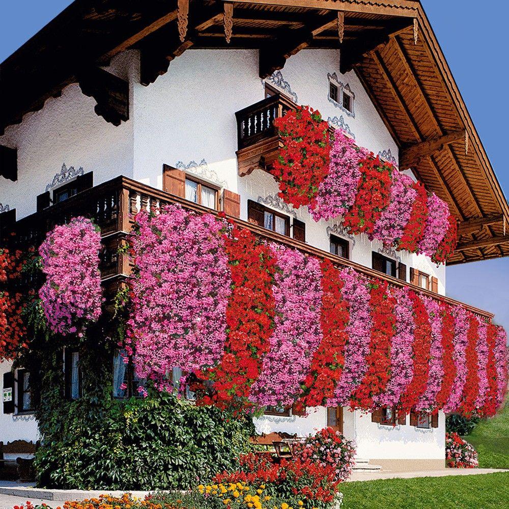 12 x echte tiroler h nge geranien balkon gestaltung pinterest. Black Bedroom Furniture Sets. Home Design Ideas
