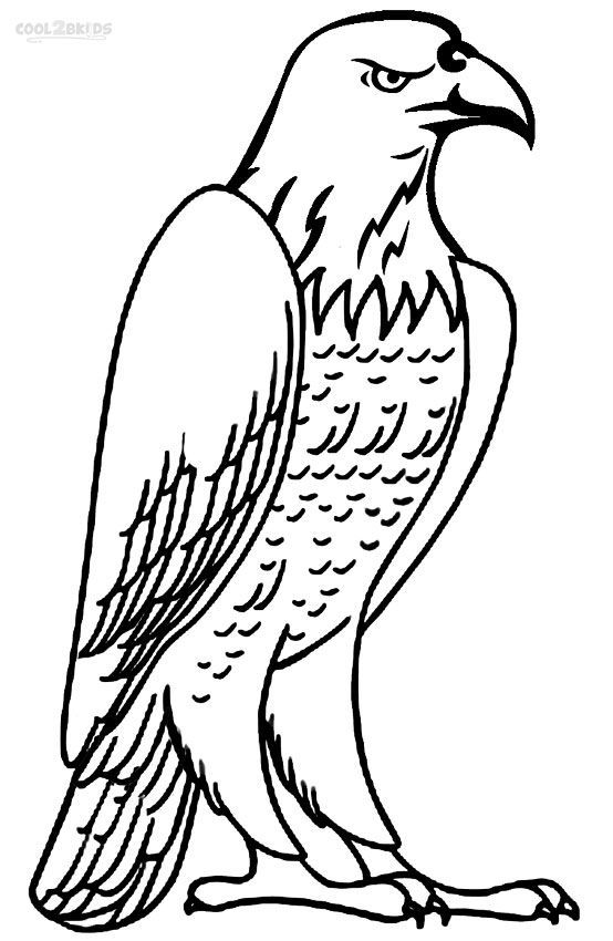 Bon Printable Bald Eagle Coloring Pages For Kids | Cool2bKids