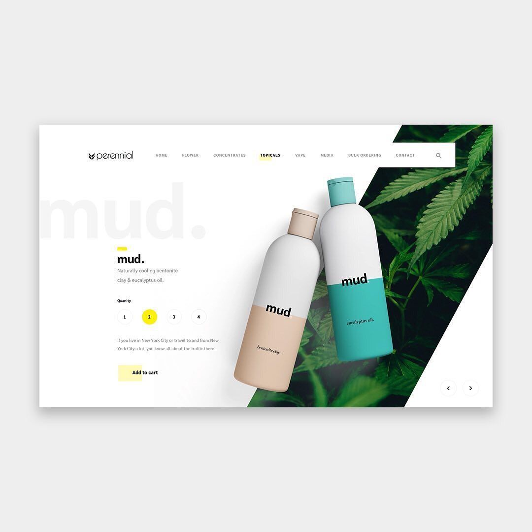 "THEUIUXCOLLECTIVE on Instagram: ""Product Page Design For 'PERENNIAL' 