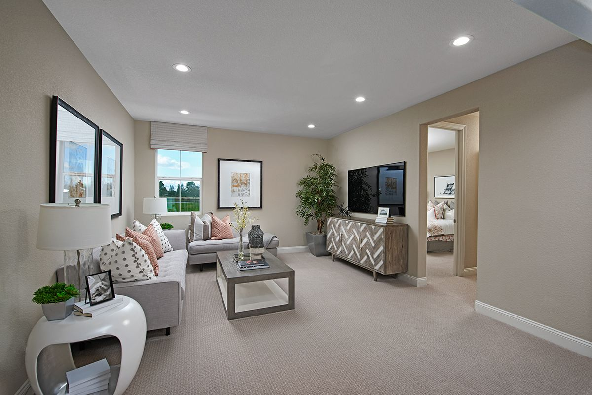 Playful patterns abound! in 2020 Richmond american homes