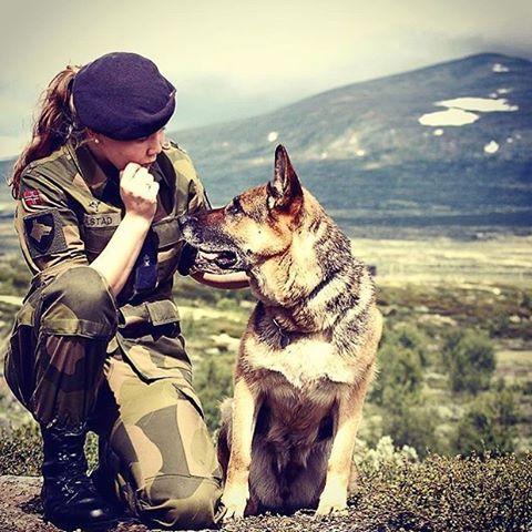 @cmkaastad tjenestegjorde i 2012 som hundefører! Her er hun med Fenja, hennes trofaste makker