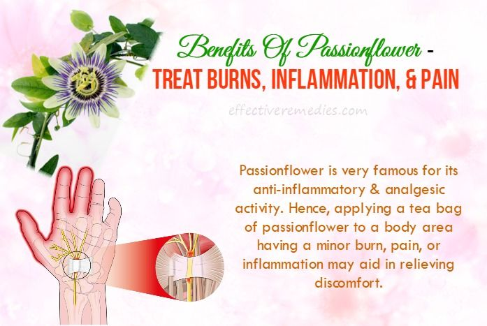 Do You Know Benefits Of Passionflower Uses Side Effects On Health This Is What You Should Not Miss Passion Flower Health Herbalism