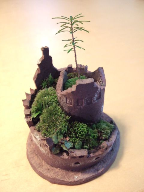 Bonsai おしゃれまとめの人気アイデア Pinterest Marie Cveckova