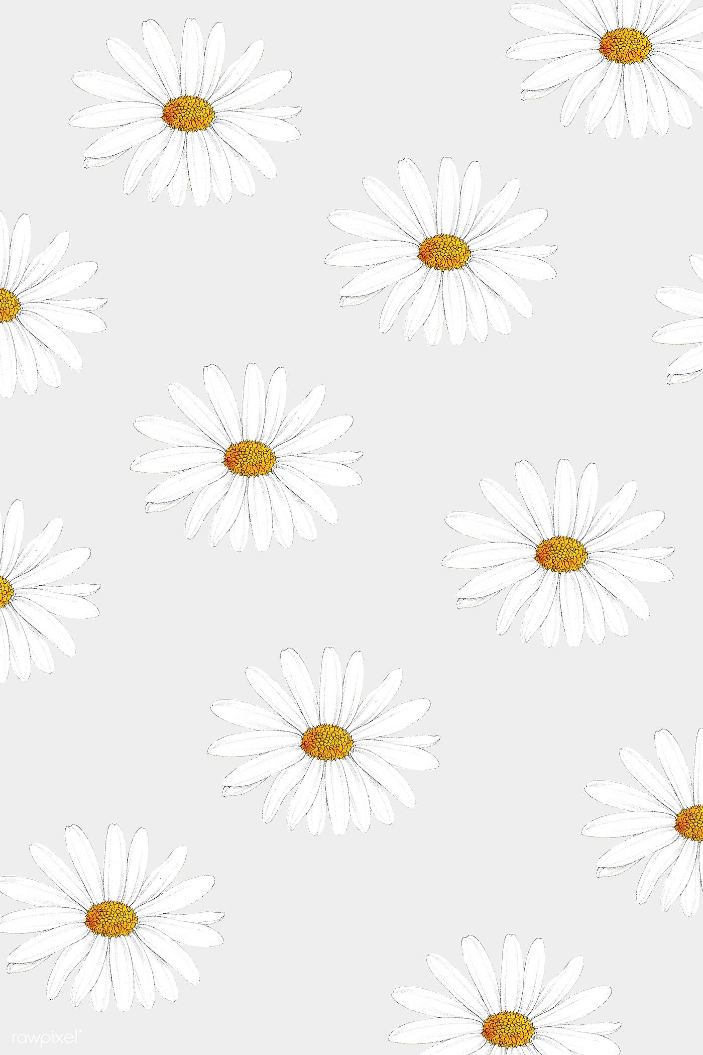 Download premium illustration of White daisy patterned