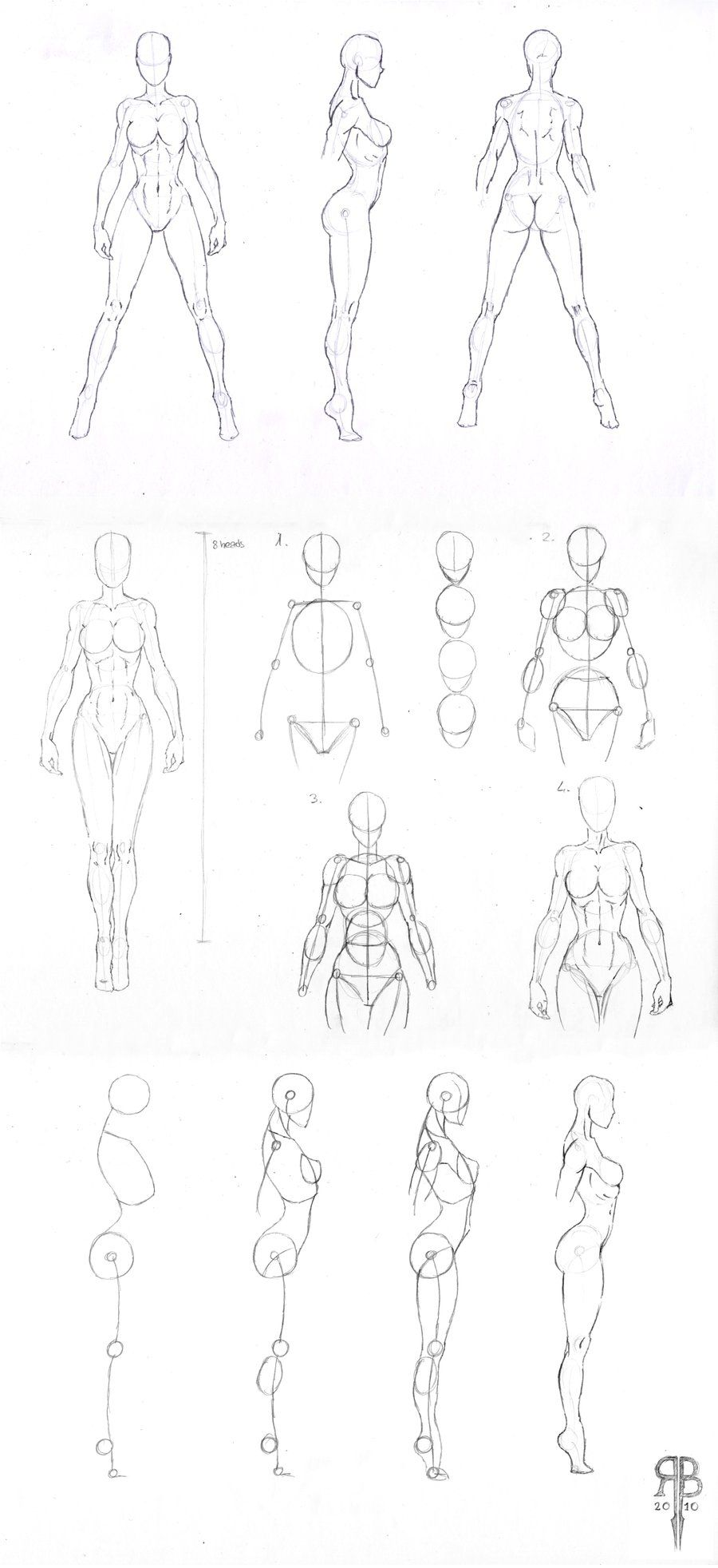 female body shapes reference by rofelrolf on deviantart drawing