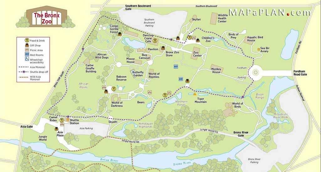 Central Park Zoo Wildlife Conservation Society Bronx Zoo Zoo