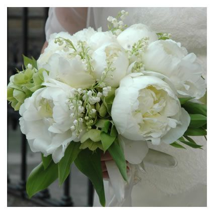 Bouquet Peonie Sposa.Idea Di Concetta Greco Su Bouquet Nel 2020 Peonie Bouquet Da