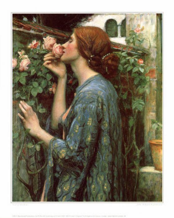 Waterhouse ..Soul of a rose