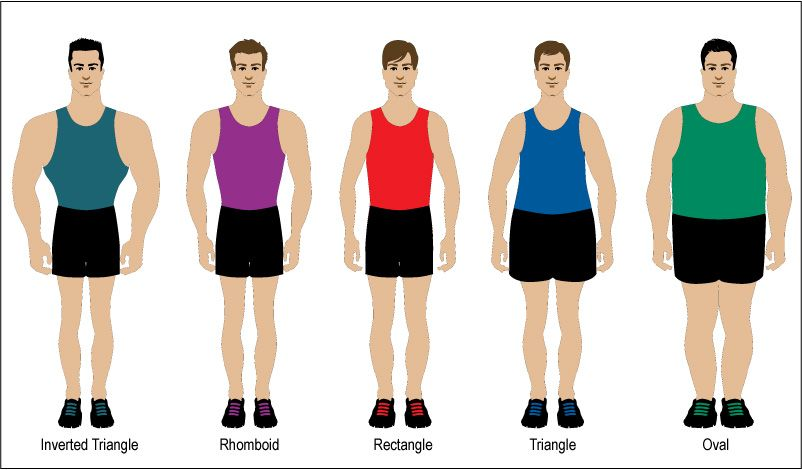 9413047985 The body types of men -- knowing where to place the waist button on a suit.