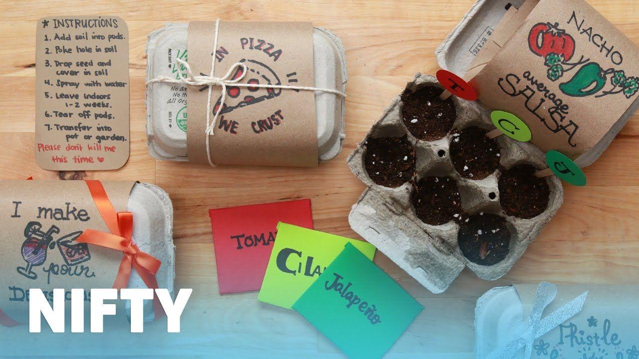 Seed Starter Gift Kit Lifehacks Buzzfeed Buzzfeednifty
