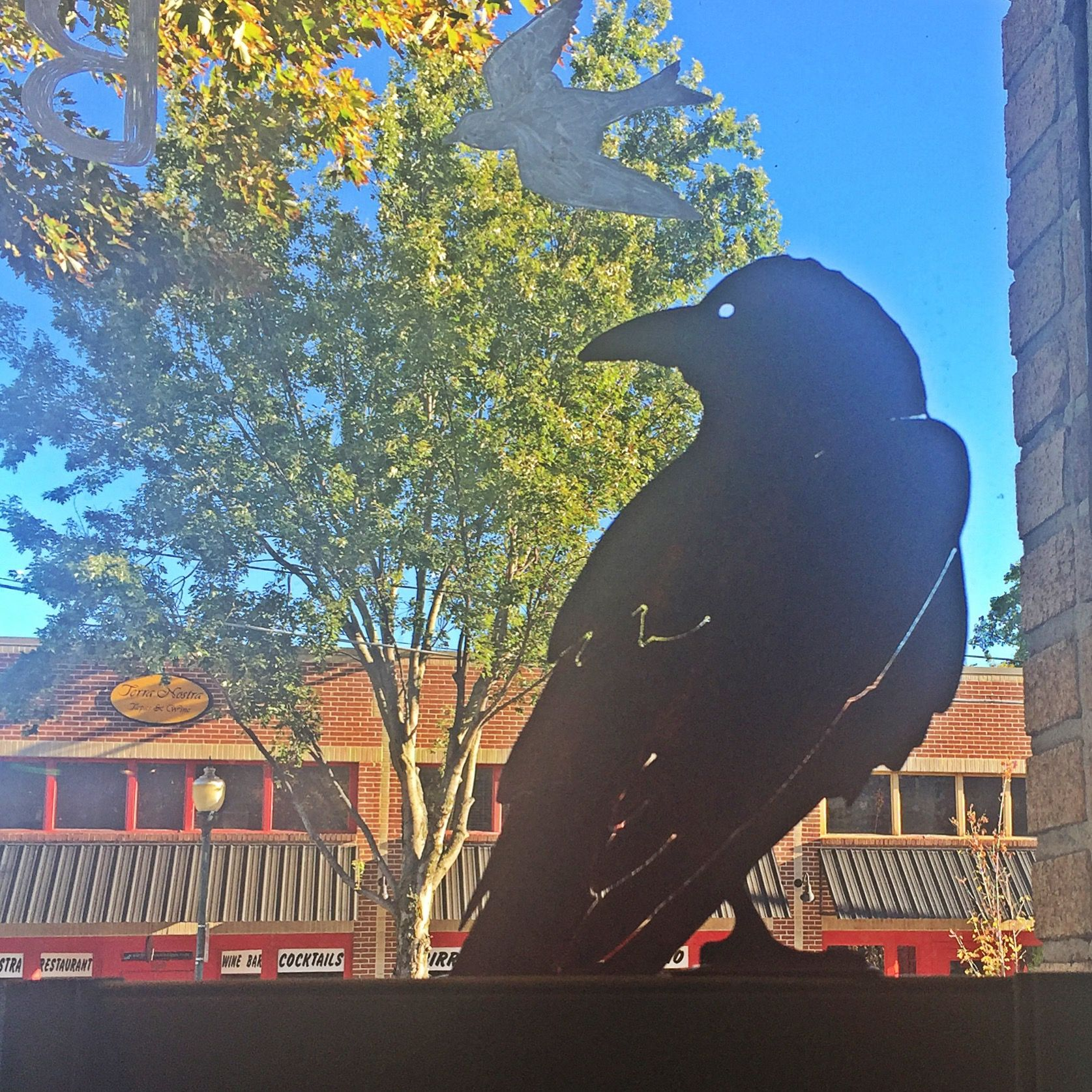 This old crow has been keeping one eye on Frazier Avenue. His distressed patina is great for indoor or outdoor decoration and comes with a stand alone base that easily affixes to branches, fences, windows and doors. Available at blue skies.
