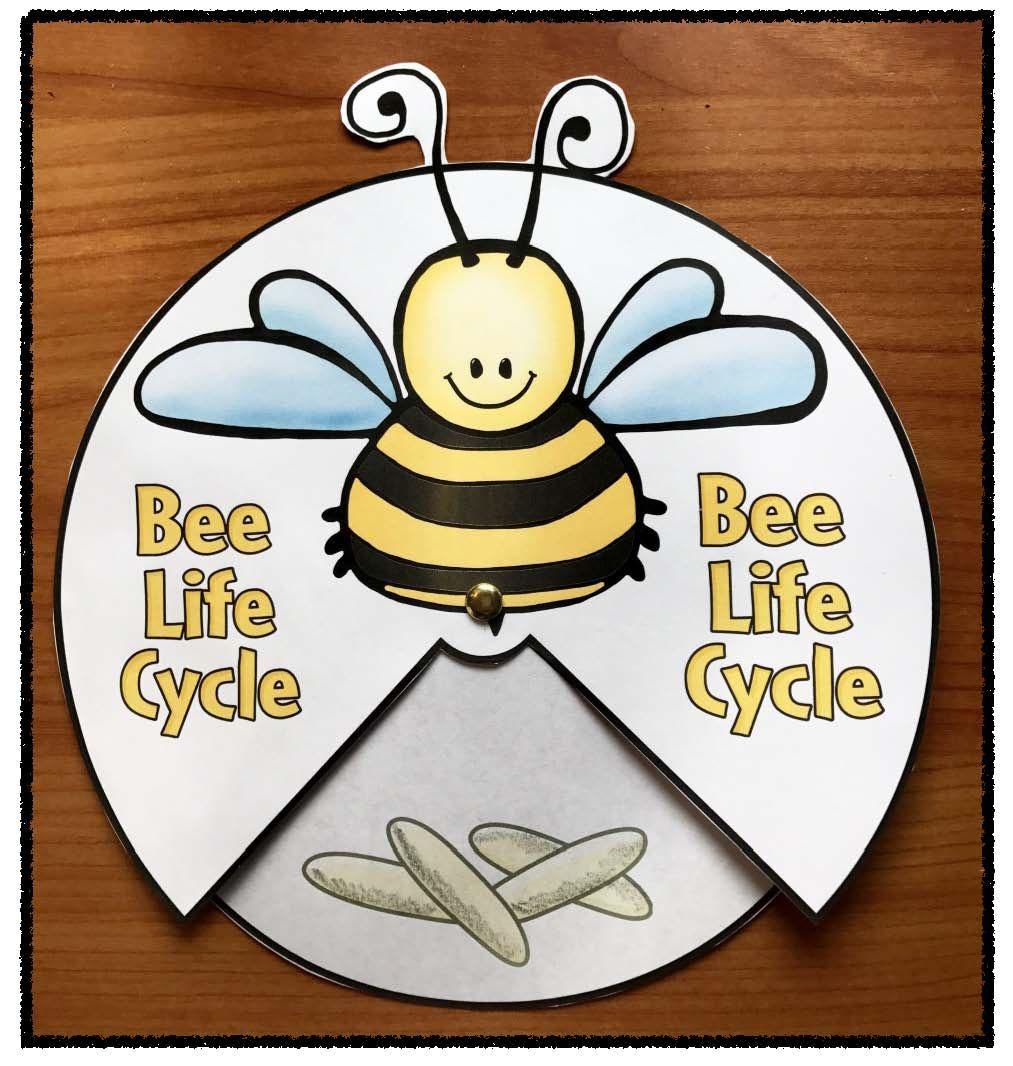 31++ Flawless honey bee worksheets ideas