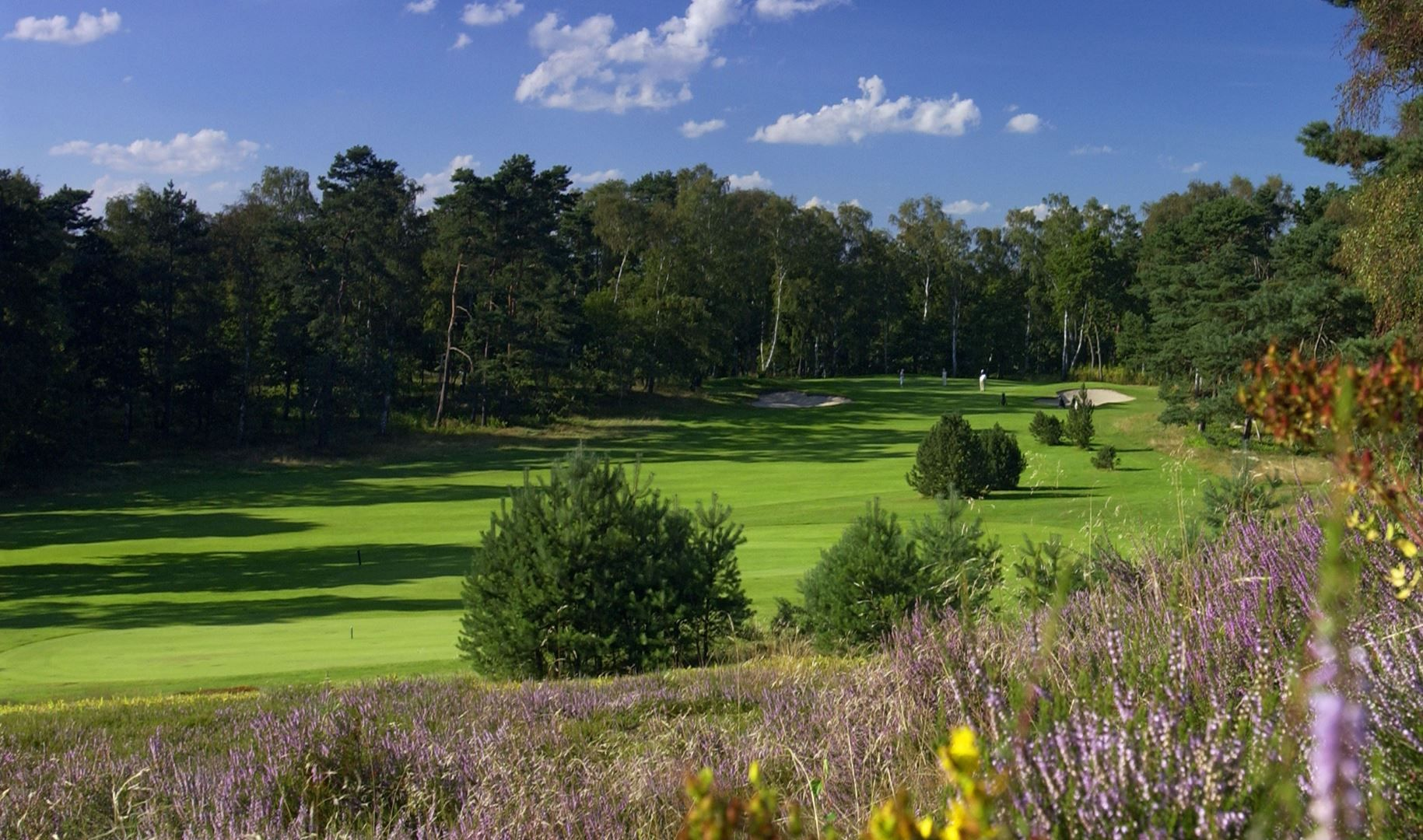 Hamburger Falkenstein Golf Club Rank Number 1 In All Golf Course In Germany It Is An Attractive Golf Course Which Is Routed In Golf Courses Golf School Golf
