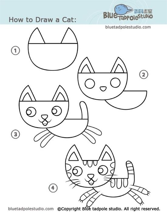 Basic Cat Drawing : basic, drawing, Drawing, Kids,, Drawings,, Projects