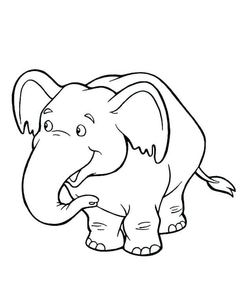 ausmalbilder elefant hase | kinder ausmalbilder