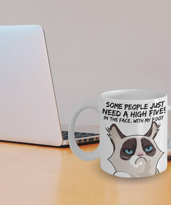 Grumpy Cat Mug Angry Cat Funny Coffee Mug Some People Need A High Five In The Face With My Foot Cat Mugs