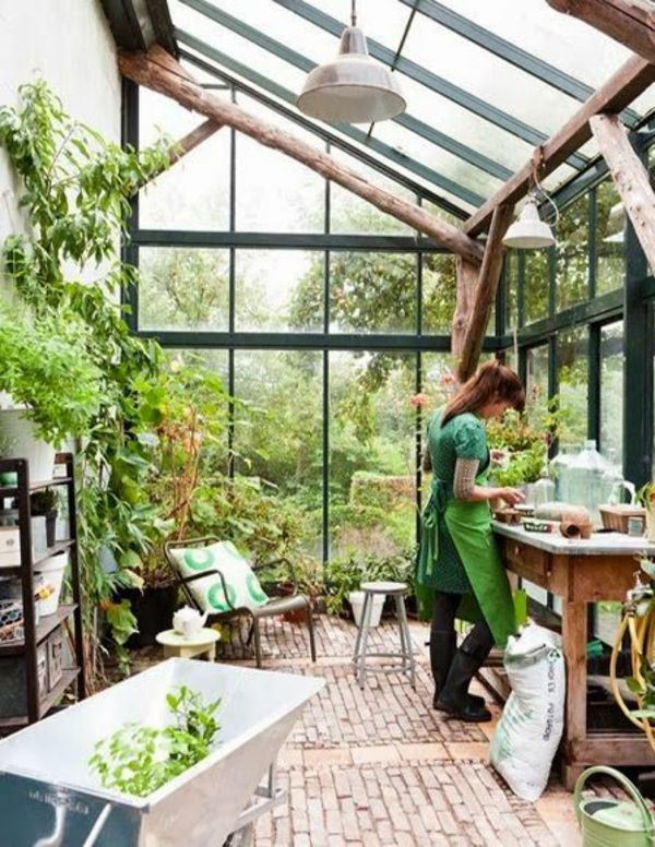 Wintergarten gestalten und pflegen - kann das Ihr neues Hobby sein - tipps pflege pflanzen wintergarten