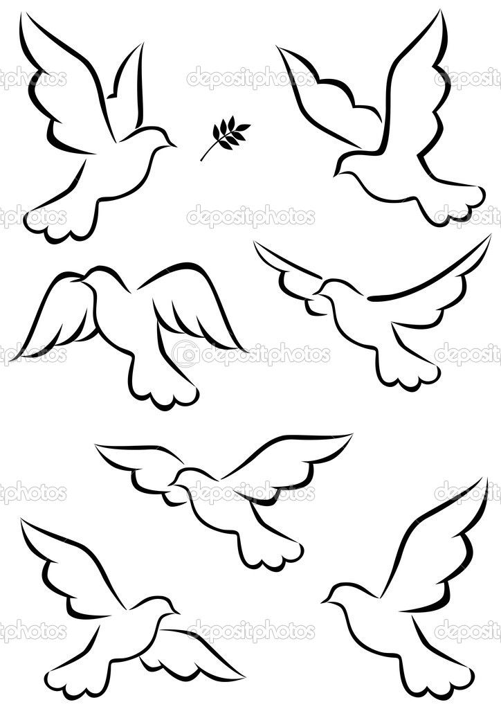 Simple Bird Line Art : Dove drawings tattoos twitter facebook pinterest google