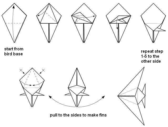 Diagram Of Angel Fish Free Vehicle Wiring Diagrams