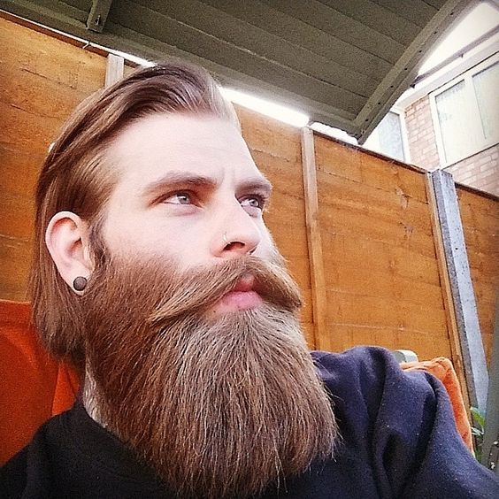 Daily Dose Of Awesome Beard Styles From Beardoholic.com
