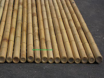 Capped on top to prevent water/ moisture: Creasian's Fencing-6'(ft) Bamboo Fencing (rolls) 1''(dia)-8'(ft) Rolled Bamboo Fence Panel3/4''(dia): search=3.4%bamboo%rolls%of%fence‎%fencing%panels%-privacy fencing/garden fence/yard fences-decorative bamboo fencing 6'x8'
