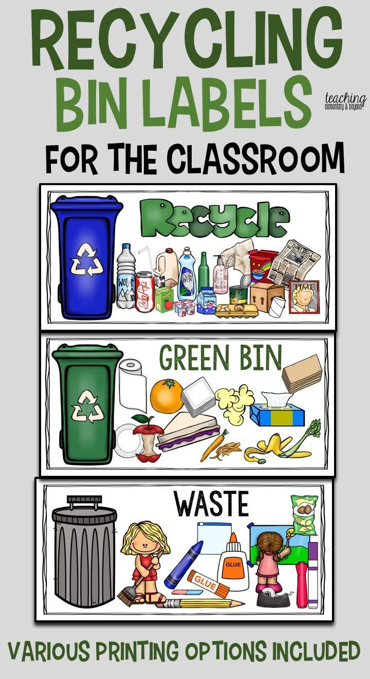 Recycling Labels A Visual Prompt for Students at School