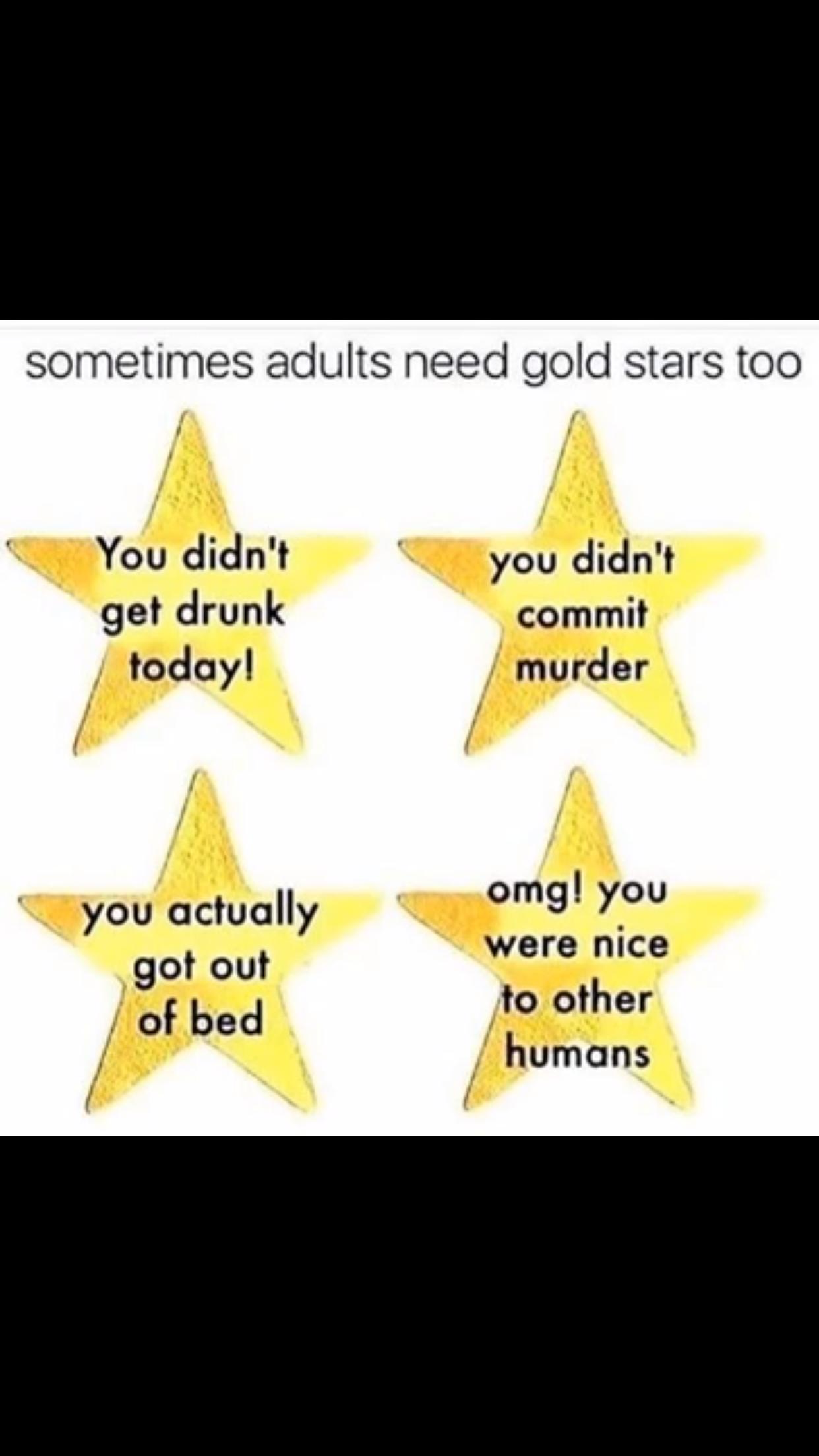 Pin by Cat Cordeiro on LOLZ Gold stars, Haha meme, Adult