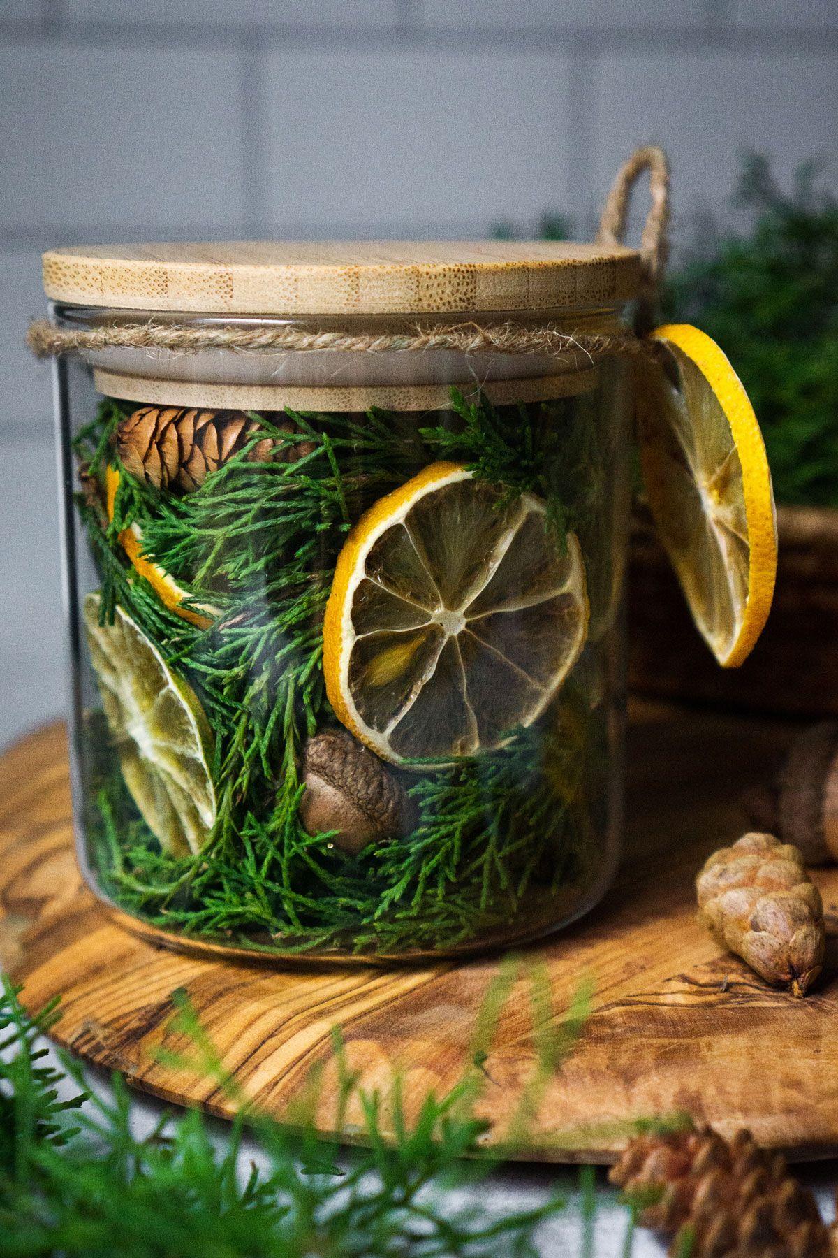 Photo of Woodland Winter Stovetop Potpourri Recipe | Herbal Academy | This Woodland Winter Stovetop Potpourri
