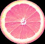 RR_PinkLemonade_Element (71).png
