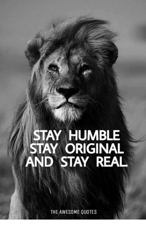 STAY HUMBLE STAY ORIGINAL AND STAY REAL THE AWESOME QUOTES   Humble Meme on ME.ME