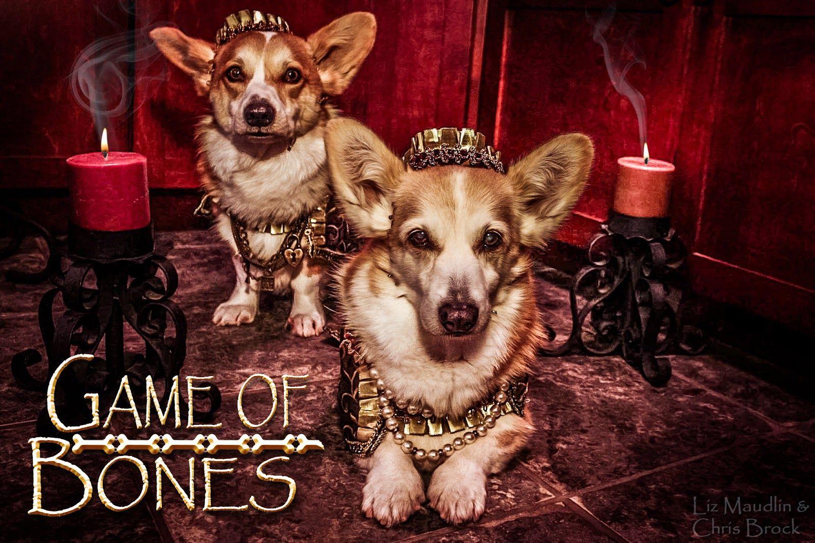Game Of Bones Corgi Edition Corgi Corgi Dog Corgi Butts