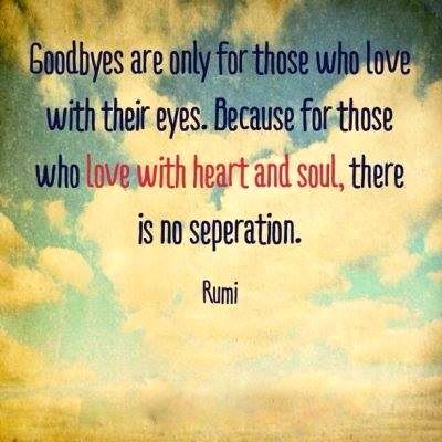 No Separation Rumi Xx Communion And Connection Between Beings