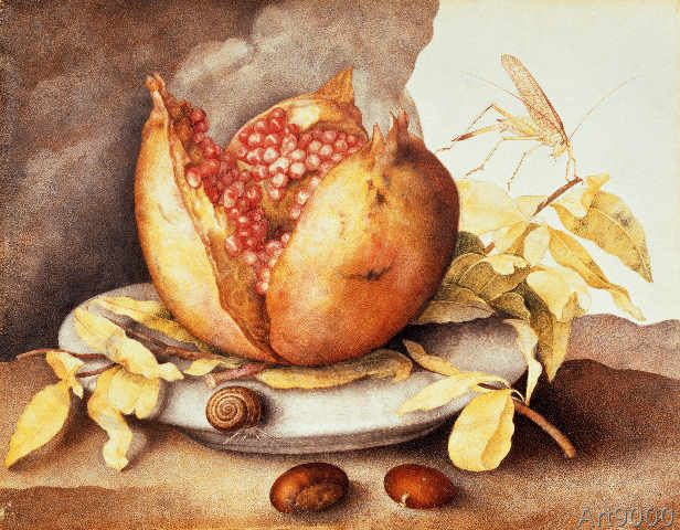 Giovanna Garzoni - Teller mit Granatapfel, Kastanien und Schnecke