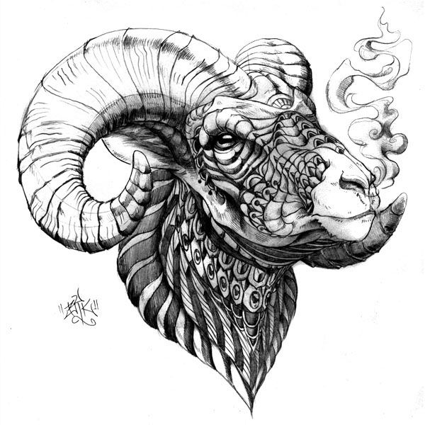 Hand Drawn Ornately Decorated Bighorn Sheep Drawn With