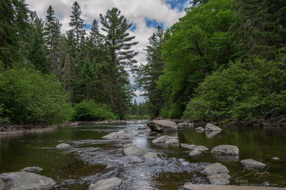 Took this photo in Algonquin Park Ontario Canada this past summer. [1200x800] [OC]