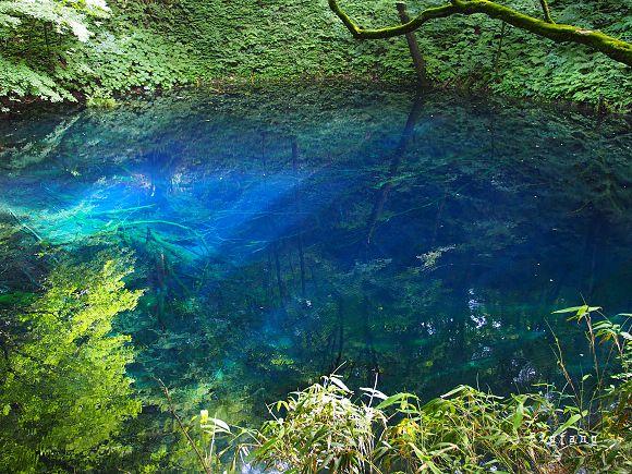 日本 東北 青森白神山地世界遺產 十二湖散策 看最美的青池 享受芬