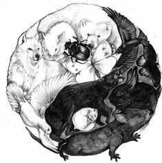 Yin and Yang owls