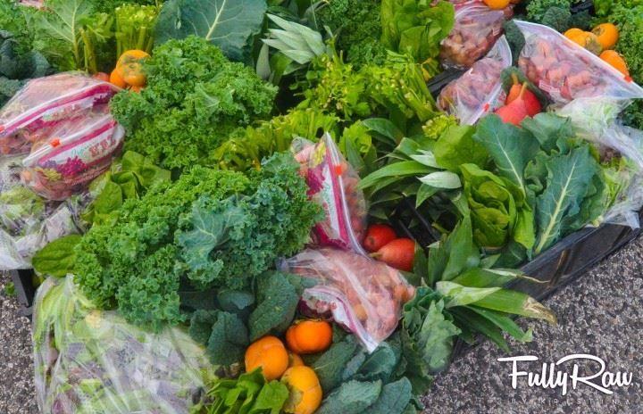 season's harvest nov 8 4