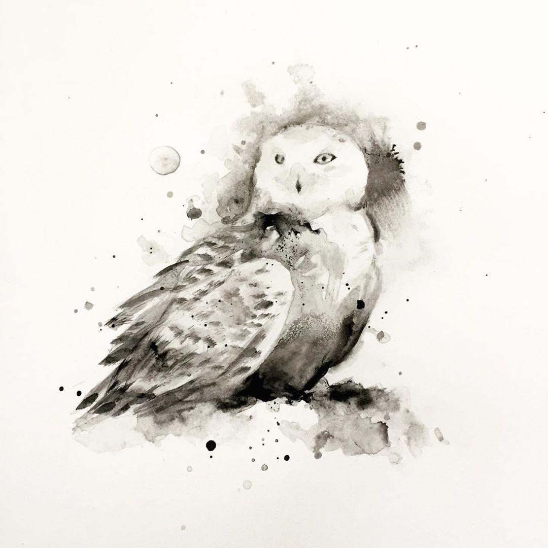 Female snowy owls don't hoot. They communicate telepathically.  .  .  .  .  .  #paintingoftheday #drawsomething #darkartists #...