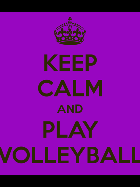 Volley Ball Quetes   Google Search. Volleyball Zitate