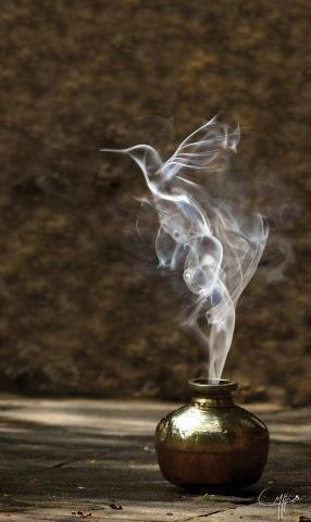Life within smoke.