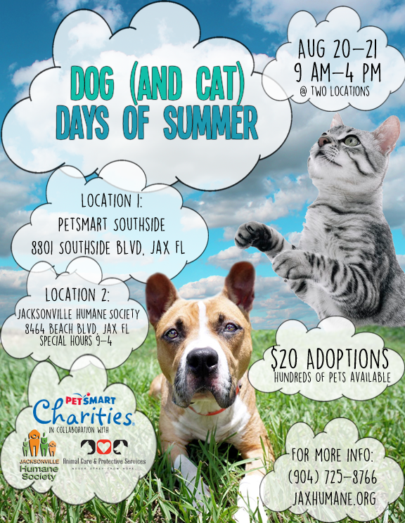 Dog And Cat Days Of Summer Jacksonville Humane Society Dog Adoption Event Humane Society Cat Day