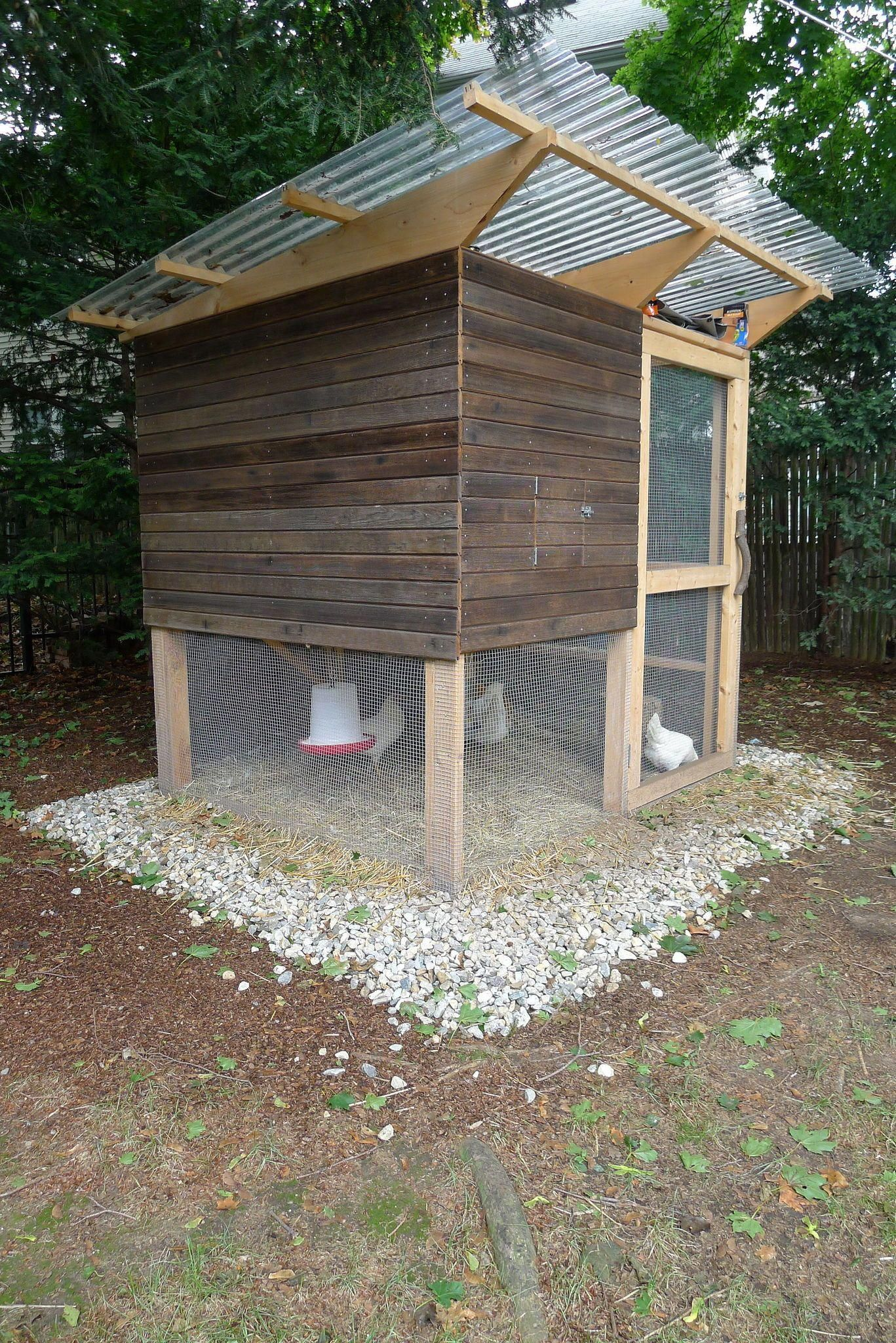 Backyard Chicken Coop Plans Backyard Chicken Coops: 5 Simple Steps On How To Build A Backyard Chicken Coop