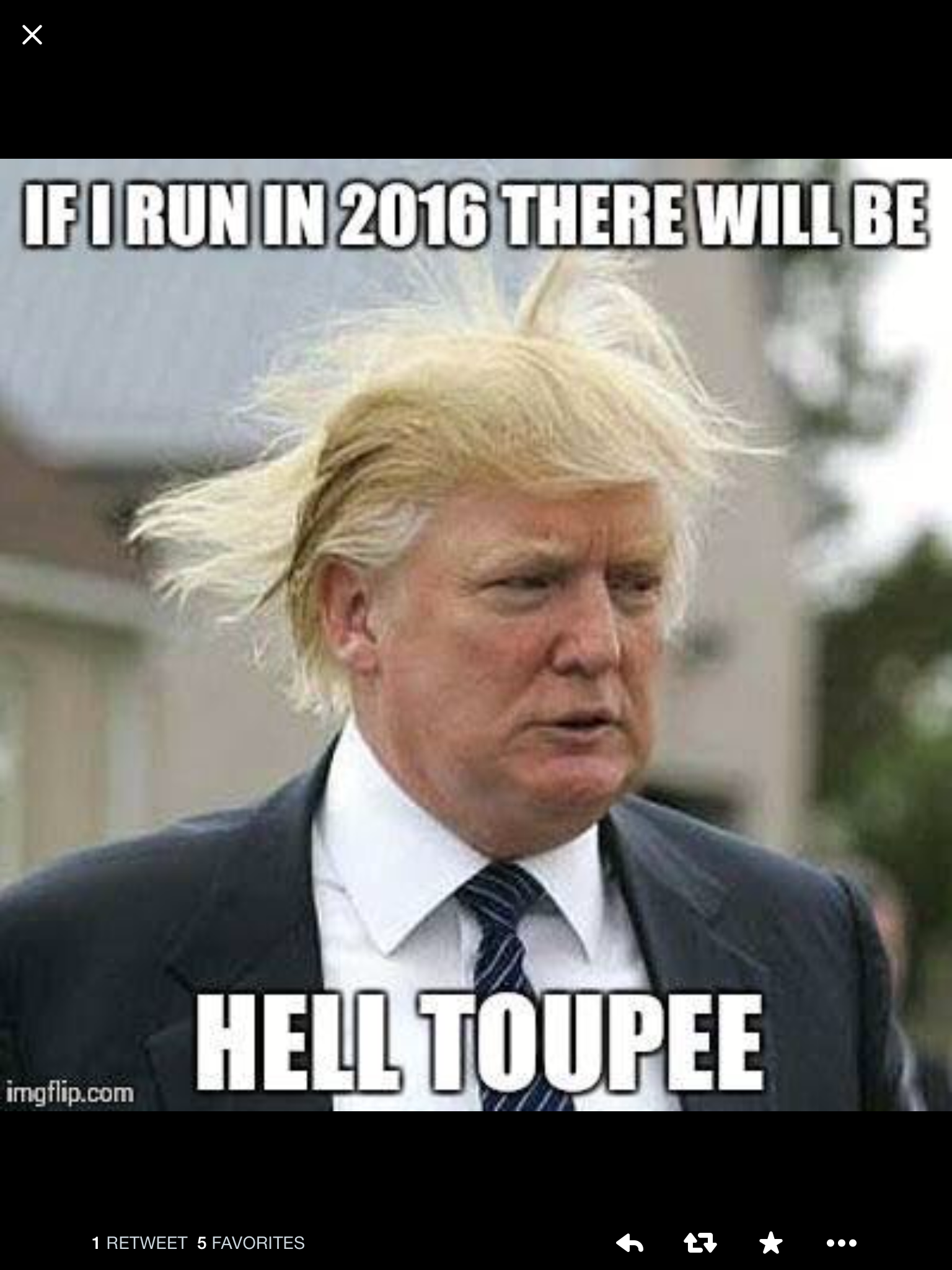 Donald trump quotes donald trump hair election memes 2012 election presidential election