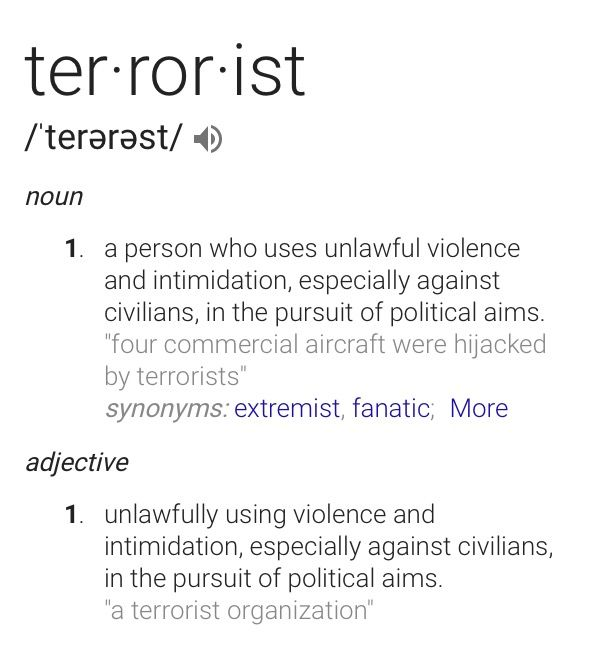 Our Government Is A Terrorist Organization. By Definition. Trump Is A  Terrorist. By