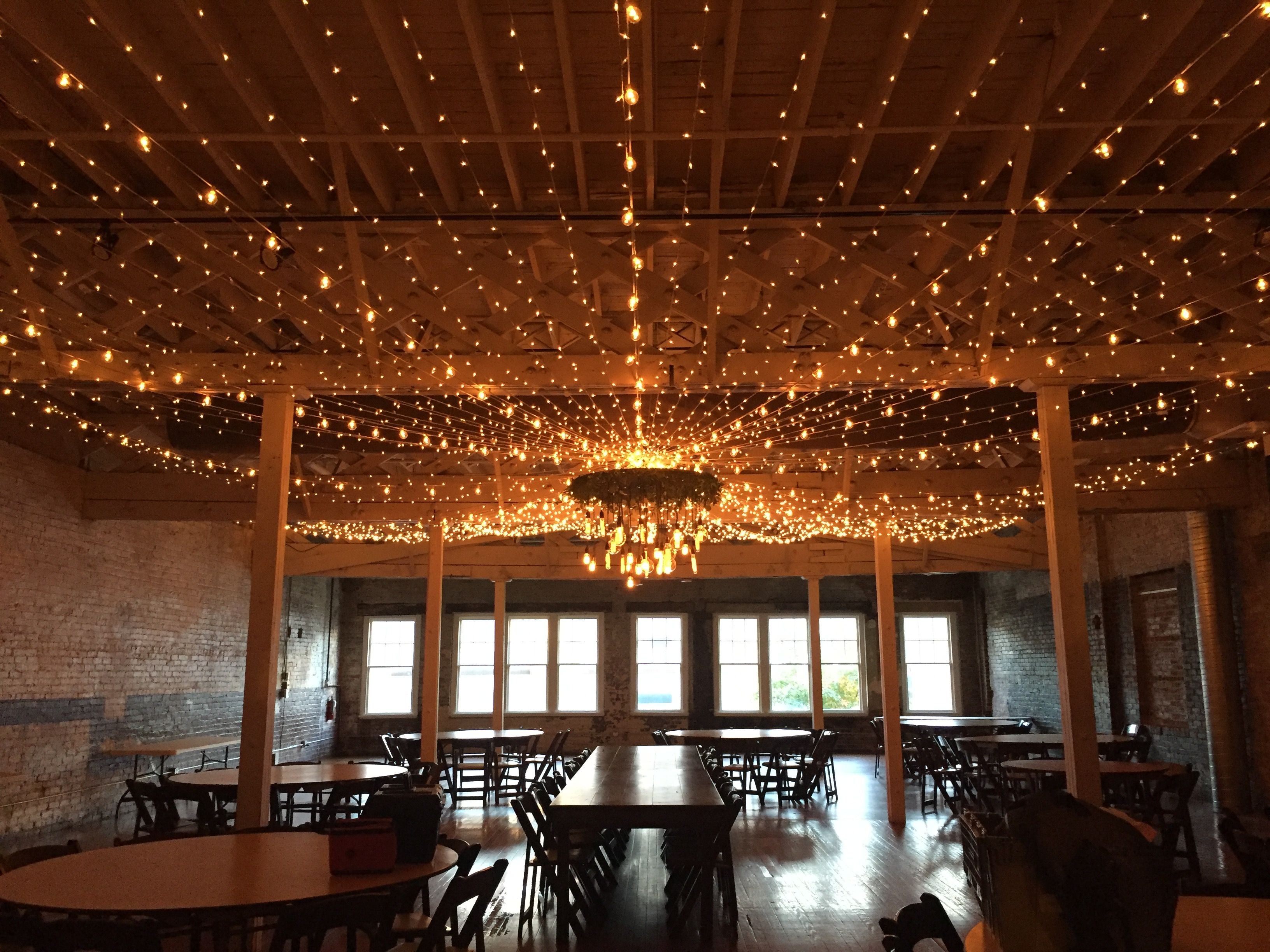 Get Lit Twinkle lights Market lights and an Edison Bulb