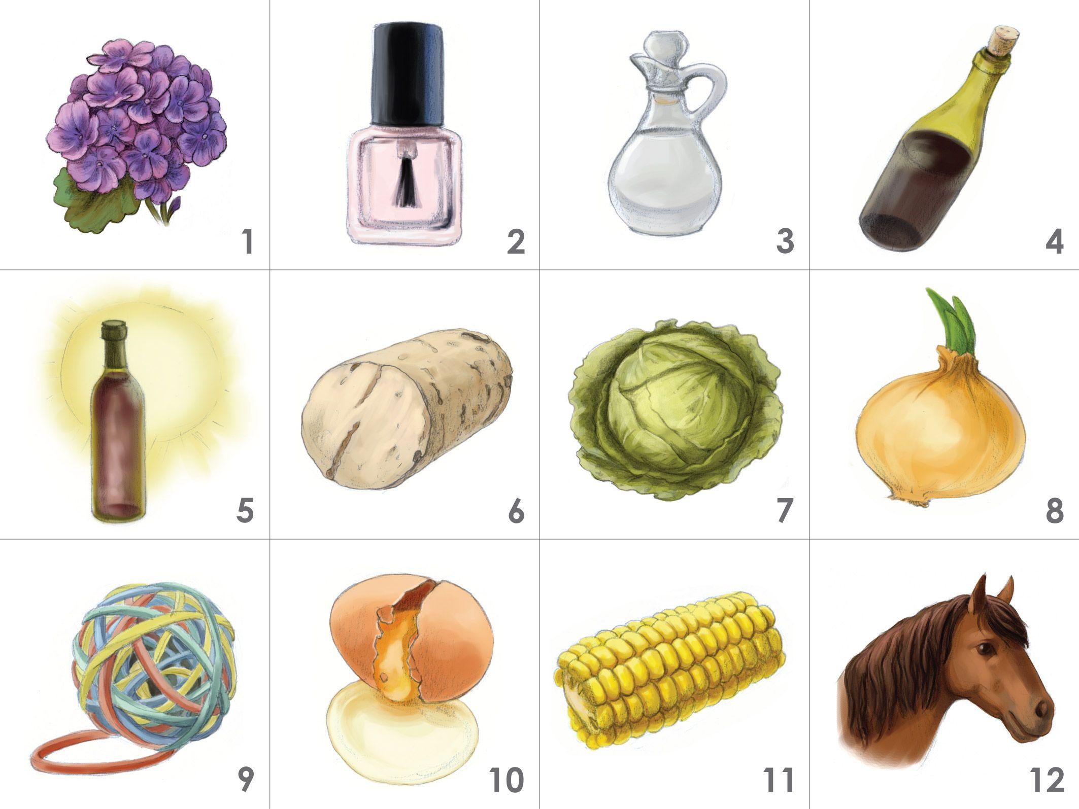 Coffret Arômes des Défauts du Vin - 12 arômes: 1.géranium, 2.dissolvant pour vernis à ongles, 3.vinaigre, 4.oxydé, 5.madérisé, 6.bouchonné, 7.chou, 8.oignon, 9.caoutchouc, 10.œuf pourri, 11.maïs, 12.sueur de cheval