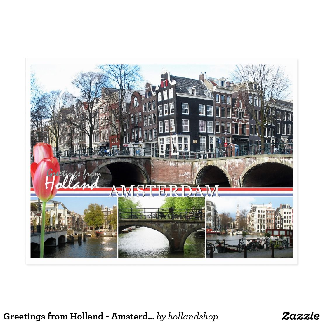 Greetings From Holland Amsterdam Postcard Zazzle Com